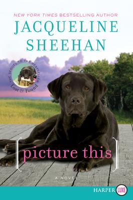 Picture This By Sheehan, Jacqueline